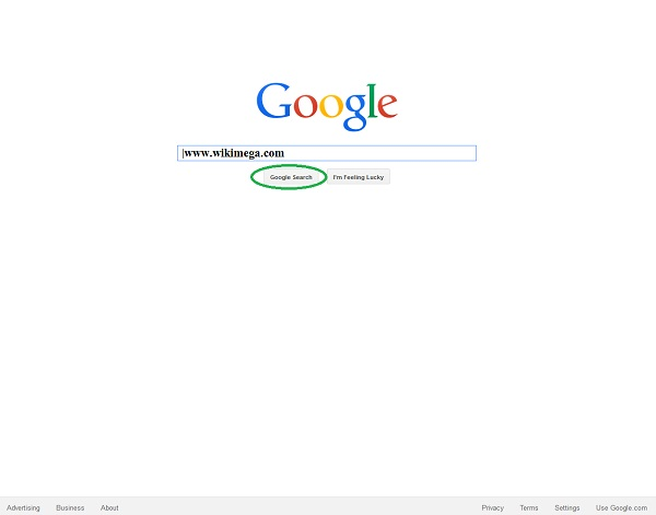 Google-the Giant Search Engine, google works, how google works, google kivabe kaj kore